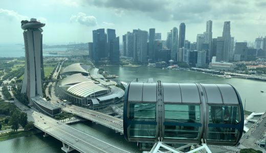 【2019年】シンガポールフライヤーのチケット料金|お得な割引情報も♪