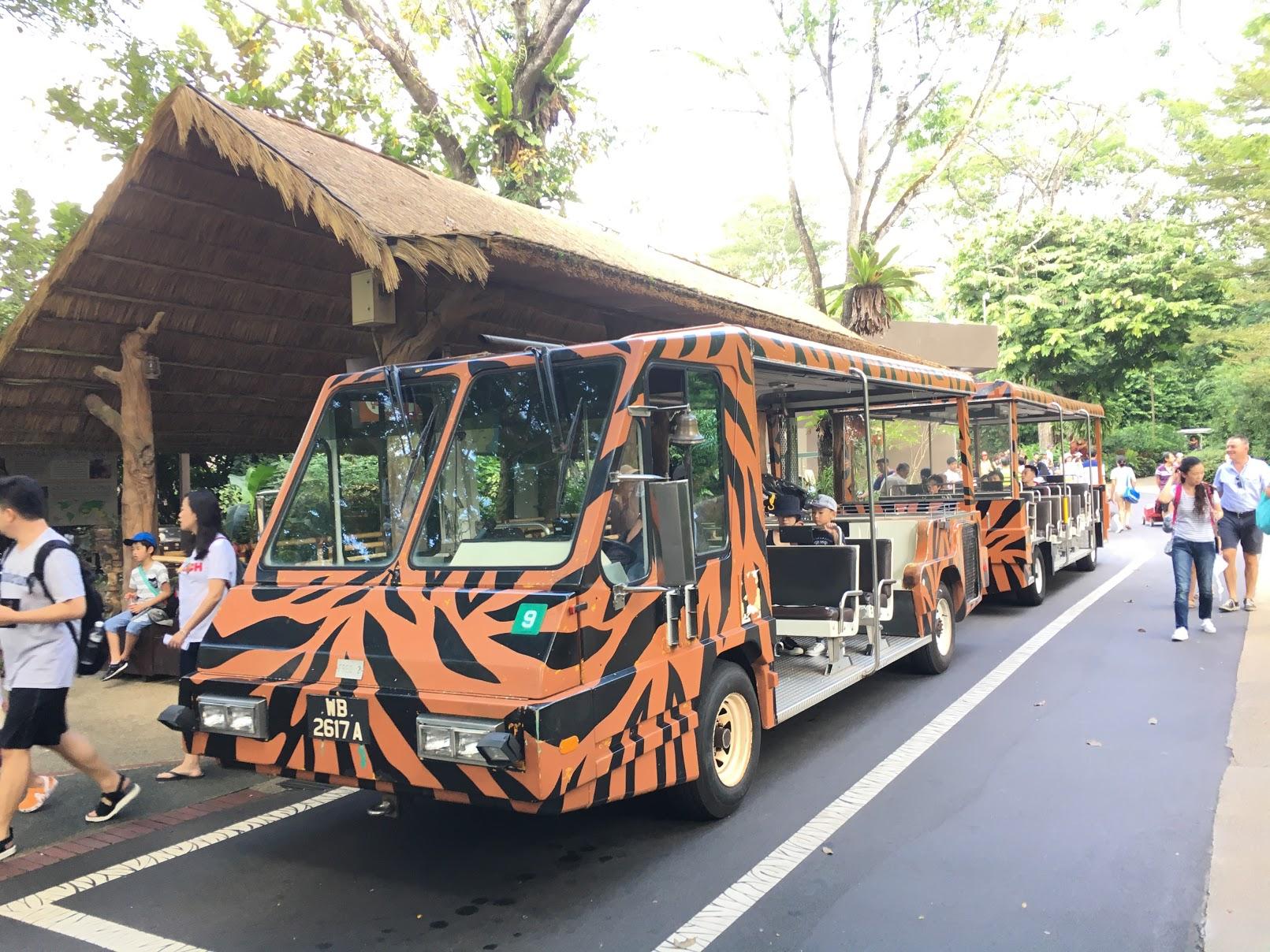 2019年 シンガポール動物園トラムのチケット料金|お得な割引情報も♪