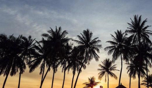 シンガポールのビーチはきれい?汚い!?現地で調査した結果…