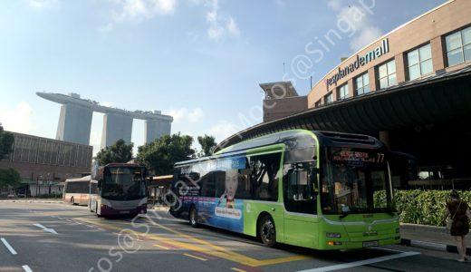 シンガポール動物園・ナイトサファリ・リバーサファリの行き方|おすすめはこれ♪