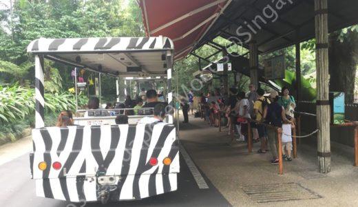 シンガポール動物園のトラムは乗り降り自由?乗り放題かどうかを現地で徹底調査